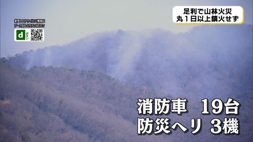 崖山 火事 両 栃木足利市山火事の原因はハイカーで特定!目撃証言でタバコの不始末と断定か