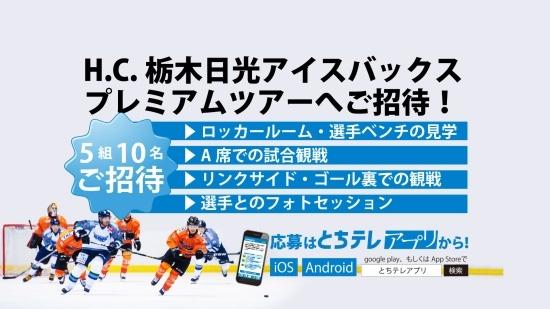 とちテレアプリ限定アイスバックスプレミアムツアーご招待!