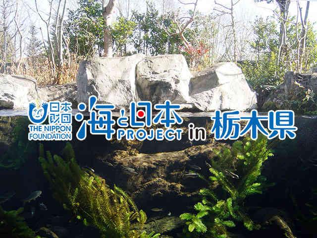 海と日本プロジェクト in 栃木県